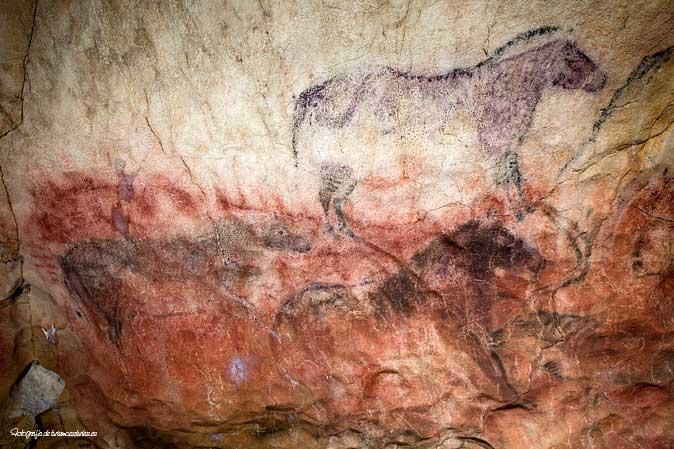 Caballos Cueva Tito Bustillo