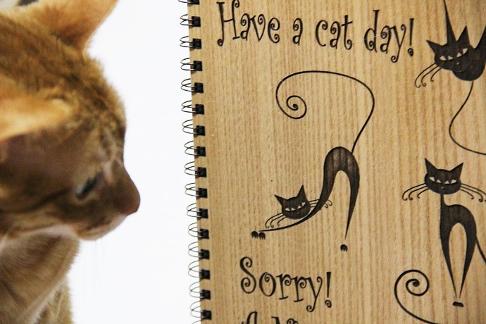 cuaderno a cat day