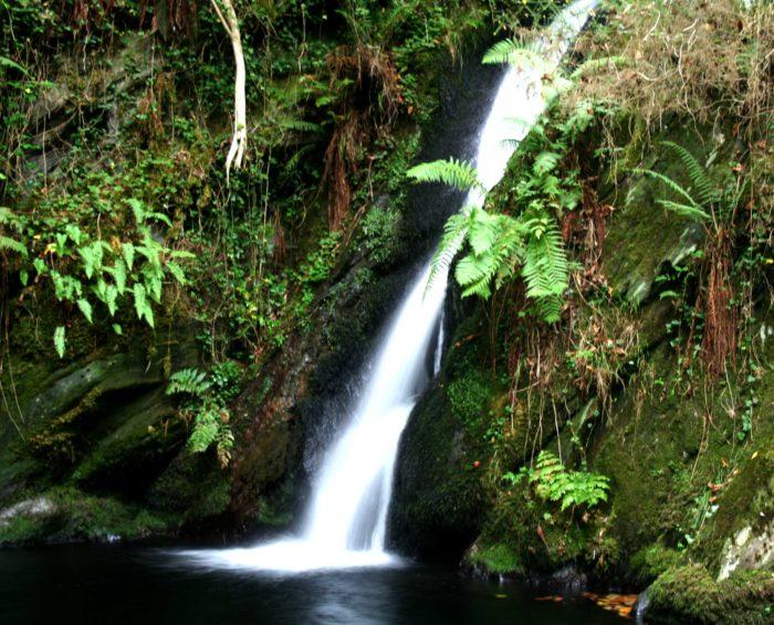 Cascada Gorgullon - en Faedo